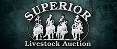 Superior Livestock Website